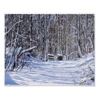 Blanket of snow photo print