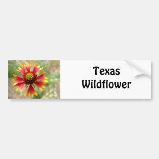 Blanketflower desert wildflower Gaillardia Car Bumper Sticker