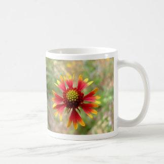Blanketflower desert wildflower Gaillardia Classic White Coffee Mug