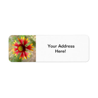 Blanketflower wildflower return label return address label