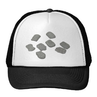 BlankRuneStones070911 Trucker Hat