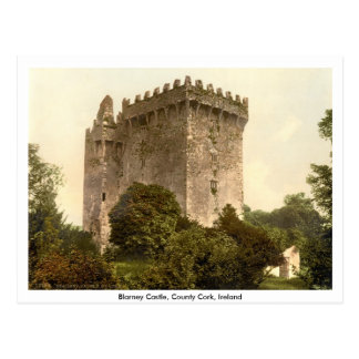 Blarney Castle, Co. Cork, Munster, Ireland Postcard