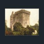"Blarney Castle Cork, Ireland, vintage print c1900<br><div class=""desc"">Vintage Ireland reproduction 1900&#39;s print of Blarney Castle,  Cork. The Irish medieval castle was built in 1446 &amp; features The Blarney Stone.</div>"