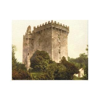 Blarney Castle Cork, Ireland, vintage print c1900 Stretched Canvas Print