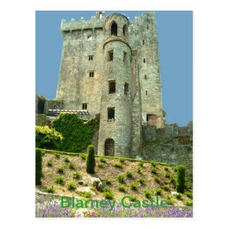 Blarney Castle County Cork Postcard