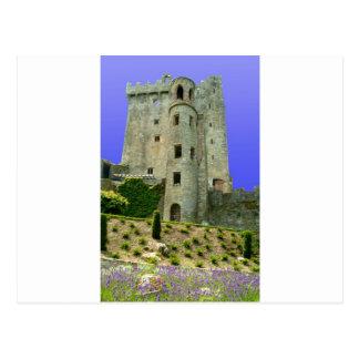 Blarney Castle Ireland Postcard