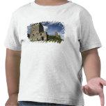 Blarney Castle, Ireland T Shirt