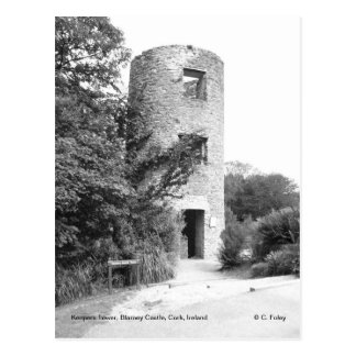 Blarney Castle Tower postcard
