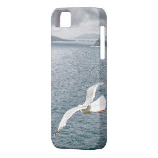 Blasket Islands-Erin Forever iPhone SE/5/5s Case