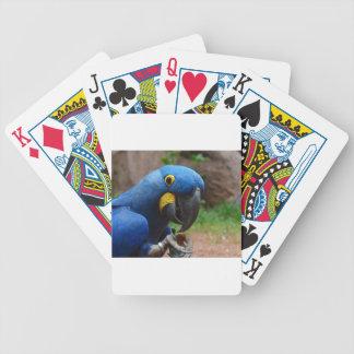 blauaras parrot bicycle playing cards