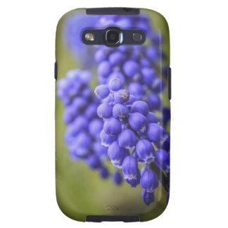 Blaue Knospen de Kleine Samsung Galaxy S3 Protectores