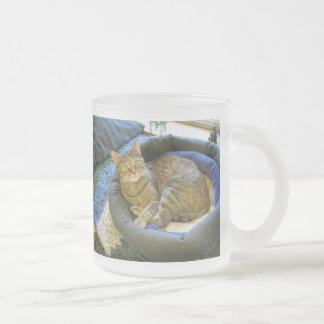 Blaze Cat Reclines Frosted Glass Coffee Mug