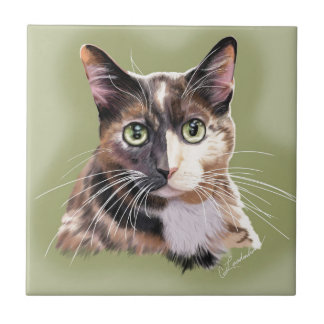 Blaze domestic short hair ceramic tile