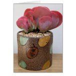 Blaze of Color Notecard - The Perfect Plant Card