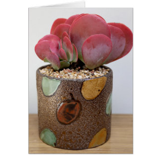 Blaze of Color Notecard - The Perfect Plant Greeting Card