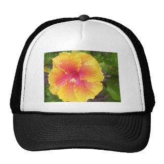 Blaze Of Glory-vicki-lynn Trucker Hat