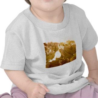 BlazeKiss Camisetas