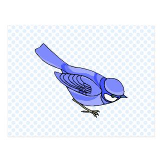 Blazer Blue Jay Postcard