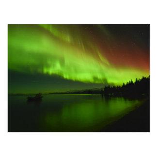 Blazing Aurora Postcard