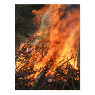 Blazing Bonfire Postcard