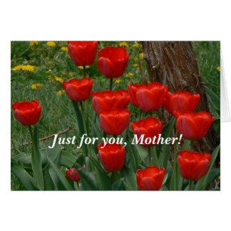 Blazing Red Tulips Card