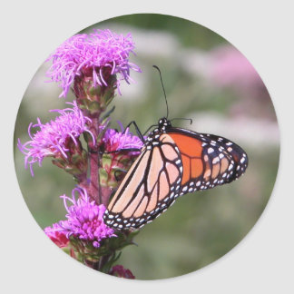 Blazing star and monarch butterfly classic round sticker
