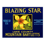 Blazing Star Pears Post Cards