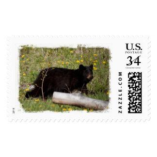BLBC Black Bear Cub Postage Stamp