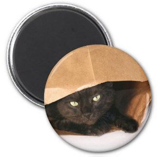 Blck cat in a bag magnet