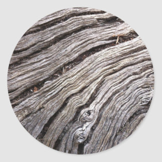 Bleached Australian hardwood of fallen gum tree Classic Round Sticker