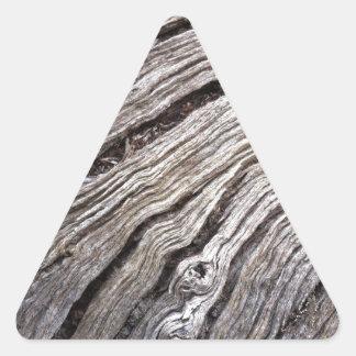 Bleached Australian hardwood of fallen gum tree Triangle Sticker