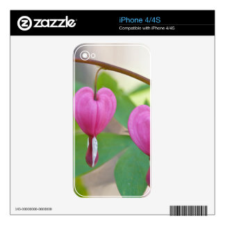 Bleeding Heart Blossoms Decal For iPhone 4