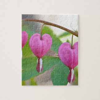 Bleeding Heart Blossoms Jigsaw Puzzle