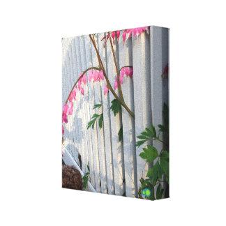 bleeding heart fence canvas print