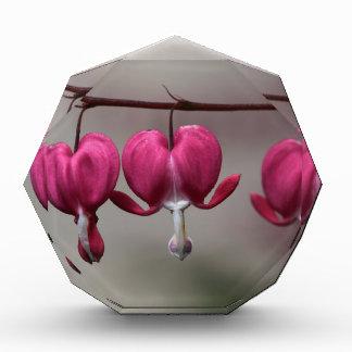 Bleeding Heart Flowers Acrylic Award