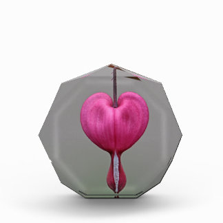 Bleeding Heart Flowers Award