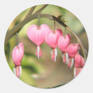 Bleeding Heart Perennials Sticker