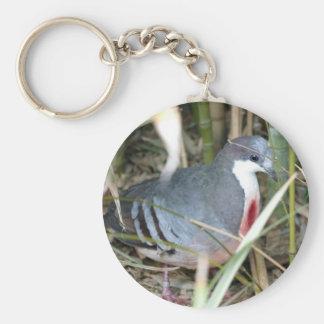 Bleeding Heart Pigeon Keychain