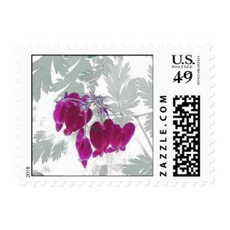 Bleeding Heart Postage Stamp