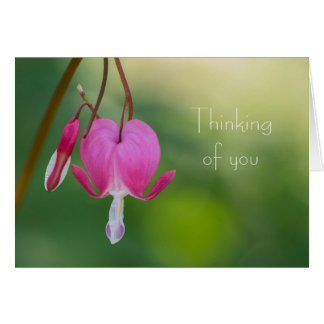 Bleeding Heart Thinking of You Card