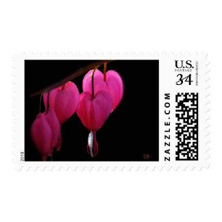 Bleeding Heart US Postage