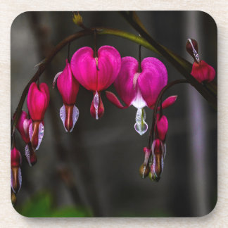 Bleeding Hearts Flower Drink Coaster