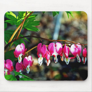 Bleeding Hearts Flowers Mouse Pad