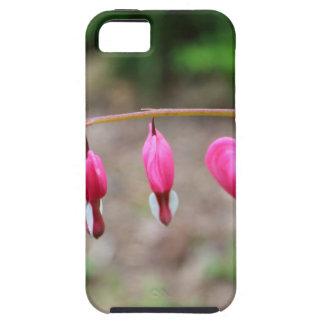 Bleeding Hearts iPhone SE/5/5s Case