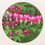 Bleeding Hearts Nature, Photo Round Paper Coaster