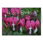 Bleeding hearts photo on birthday card greeting card