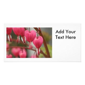 Bleeding Hearts Picture Custom Photo Card