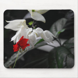 Bleeding Heartwine Flower Mouse Pad