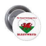 Blegywryd Pinback Buttons