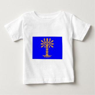 Blekinge län flag tee shirt